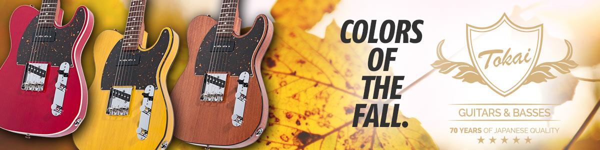 Tokai - Colors of the fall.