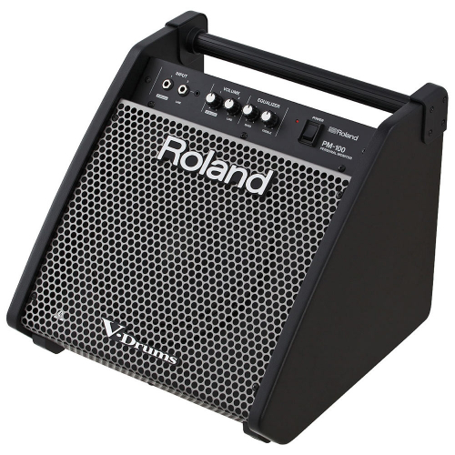 Roland PM-100 Personal Monitor Active Speaker